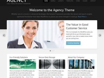 WordPress Theme Agency